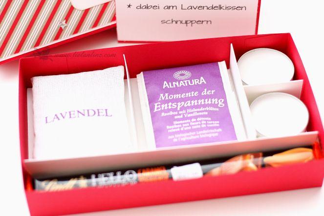 stampin-up-linz-oesterreich-anleitung-workshop-weihnachten-bento-box-04
